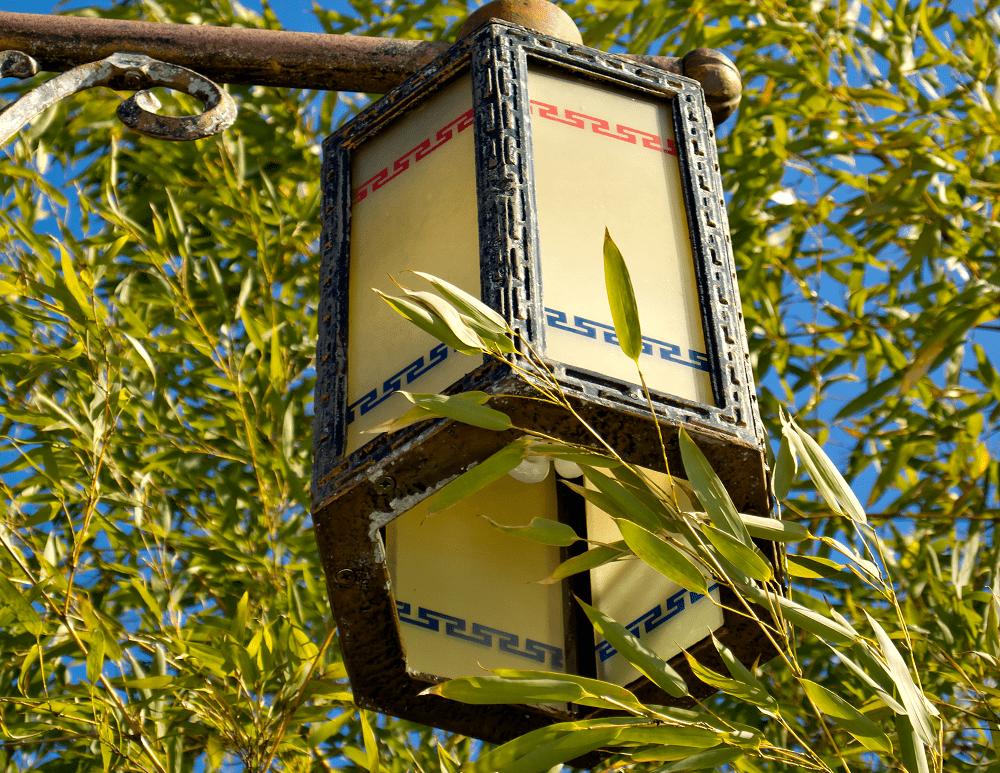 A parábola do bambu