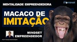 Mentalidade Empreendedora | Mindset Empreendedor | Macaco de Imitação