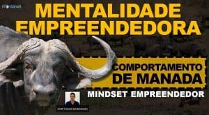 Mentalidade Empreendedora | Mindset Empreendedor | Comportamento de Manada