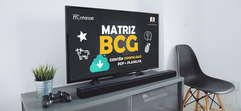 mockup-matriz-bcg