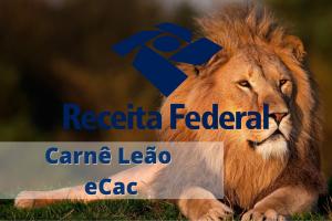 Como Preencher Carnê Leão no Portal eCac? Confira o Passo a Passo