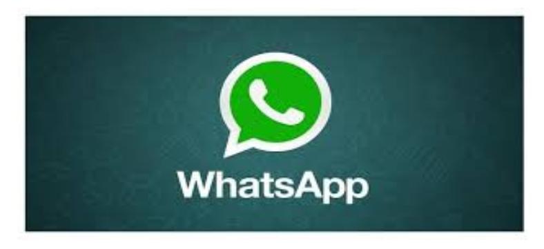 Read more about the article Pagamentos pelo WhatsApp em 2021: aplicativo negocia com Banco Central