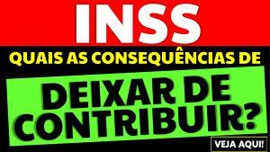 Deixar de contribuir para o INSS: Quais são as consequências?
