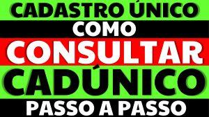Read more about the article Meu Cadúnico   Cadastro Único   Como consultar o CadÚnico em 2021